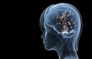 Actividad cerebral del consumidor