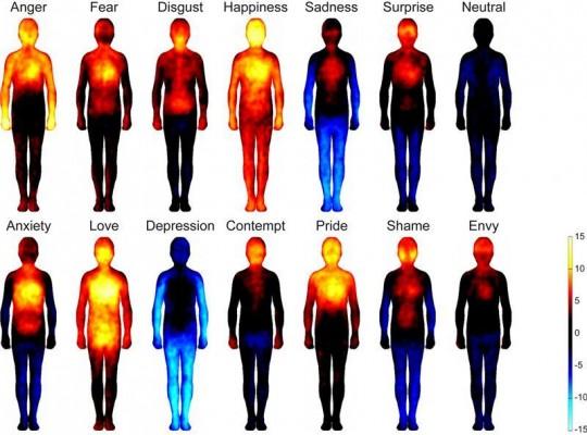 Mapa Somático Emociones Humanas