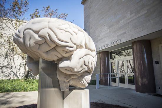 Cerebro - Temple University